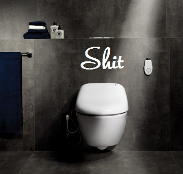 wall-mount-washlet-toilet-toto-giovannoni-2